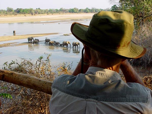Elephant Hide - Kaingo Camp & Mwamba Bush Camp - Africa Discovery