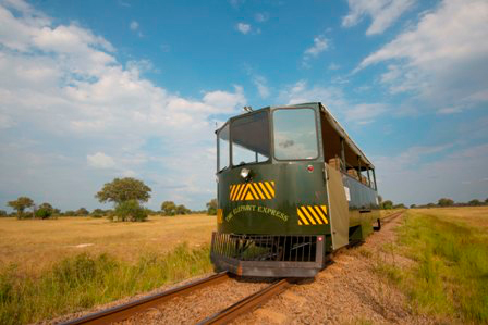 The Elephant Express Game Viewing And Transfers By Rail Car For Bomani And Camelthorn Guests