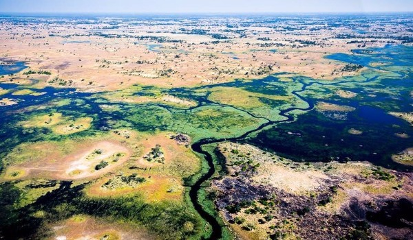 Okavango Delta, Botswana, Sanctuary Chief's Camp, Sanctuary Retreats