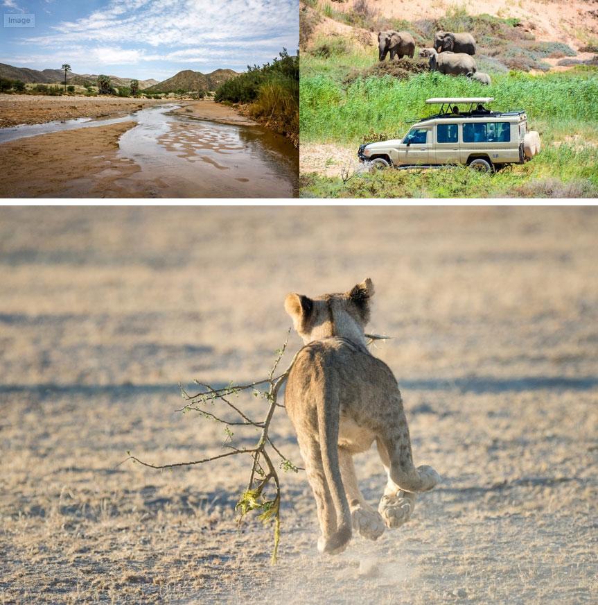 Namibia green season