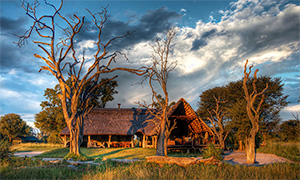 Bomani Tented Lodge - Hwange National Park, Zimbabwe