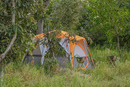 Tent - On Foot Through Botswana | Botswana Safaris & Tours