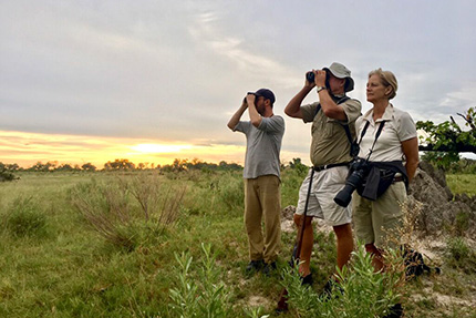 Searching for wild animals - On Foot Through Botswana | Botswana Safaris & Tours