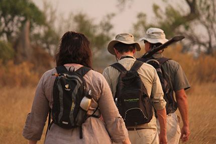 Walking safari - On Foot Through Botswana | Botswana Safaris & Tours