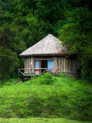 Bale Mountains Lodge in Bale Mountains National Park - Ethiopia