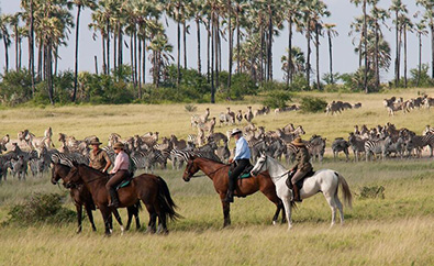 5 Nights Horse Riding Safari on the Makgadikgadi Salt Pans