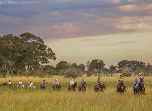 7 Nights Okavango Delta Ride