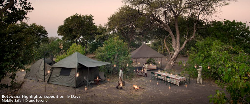 Botswana Highlights Expedition
