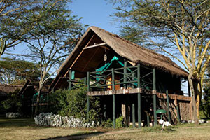Sweetwaters Serena Camp in Ol Pajeta Conservancy
