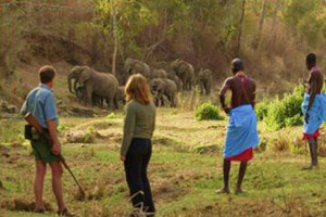 Traditional Hideaways - Kenya Safari by Africa Discovery