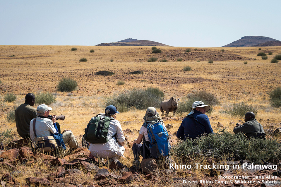 Rhino Tracking in Palmwag at Desert Rhino Camp