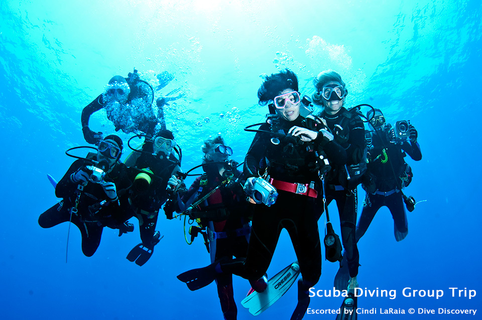 Scuba diving group trip - Dive Discovery