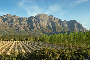 View from Franschhoek Country House - Cape Winelands