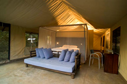 Honeyguide Khoka Moya Camp - Kruger National Park - South Africa Safari Tented Camp