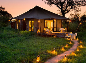 andBeyond Ngala Tented Camp in Kruger National Park