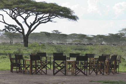Ndutu Safari Lodge - Serengeti National Park - Tanzania Safari Lodge