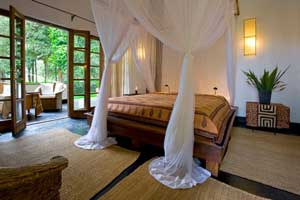 Plantation Lodge - Ngorongoro Crater