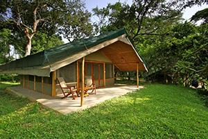 Ishasha Wilderness Camp in Queen Elizabeth National Park, Uganda
