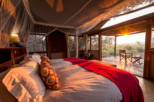 Busanga Bush Camp - Kafue National Park, Zambia