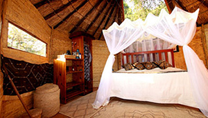 Mwamba Bush Camp - South Luangwa National Park