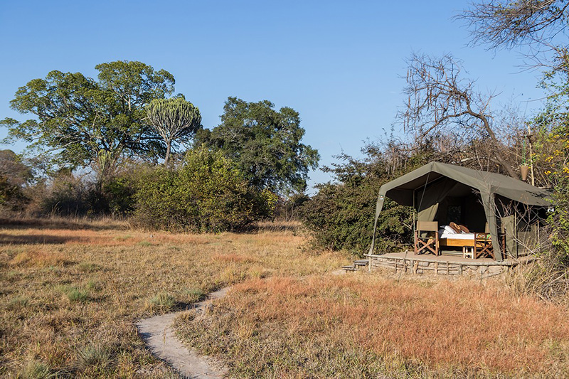 Tent - Ntemwa-Busanga Camp in Kafue National Park, Zambia